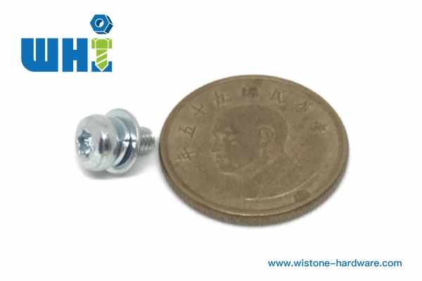 sems screw with flat washer and spring washer for electric screw