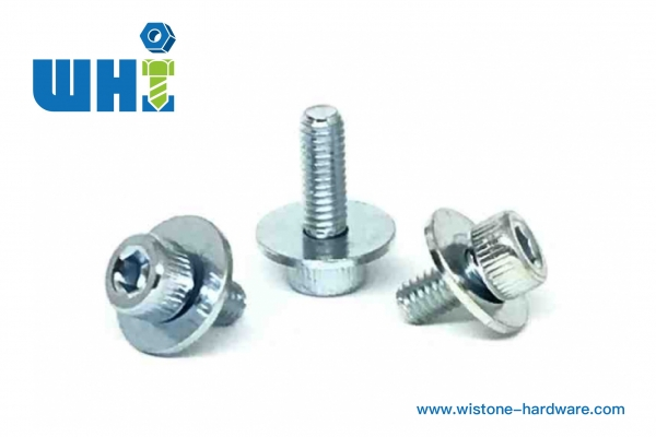 Sems screw with socket head and flat washer