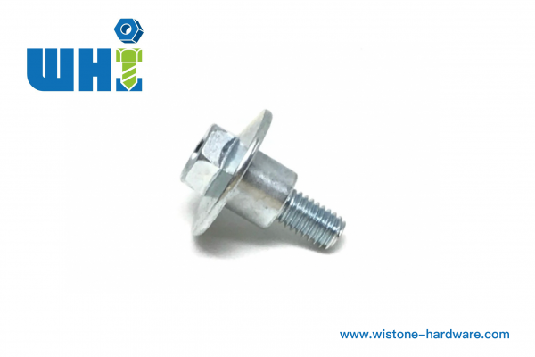 Customized Hex Washer Head Screw / SS
